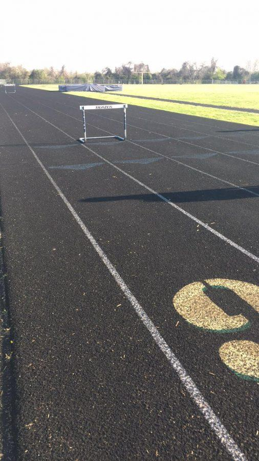 The heat pours down on the hot track, waiting for the runners to place their spikes on the turf.