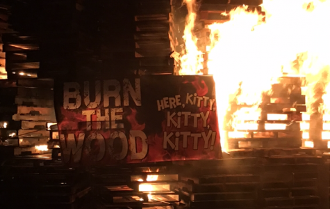 Video and Pictures: Burn the Wood